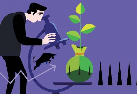 Wat is het verschil tussen waarde- en groeiaandelen?